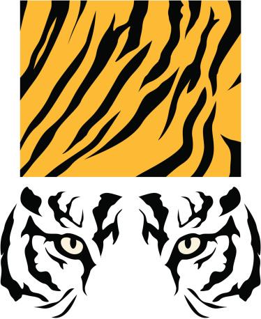 Tiger Skin and Eyes