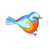 Titmouse bird sitting. Watercolor cartoon character design. Colorful abstract tomtit. Cute tit template. Illustration isolated on white background.