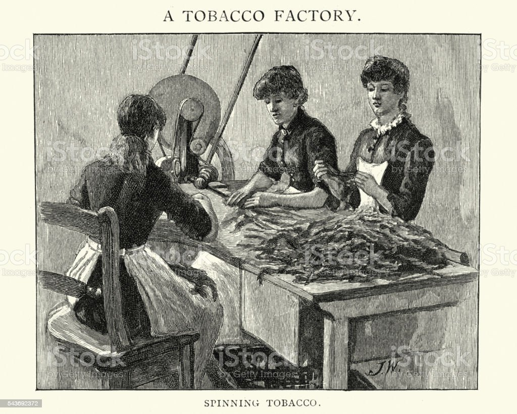 Tobacco Factory - Women spinning tobacco vector art illustration