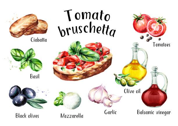 bildbanksillustrationer, clip art samt tecknat material och ikoner med tomat bruschetta ingredienser. akvarell handritad illustration, isolerad på vit bakgrund - cheese sandwich