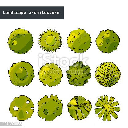 Top view vector set of different trees.Hand drawn illustration for landscape design, plan, maps.Collection of cartoon trees isolated on the white background.Urban design.