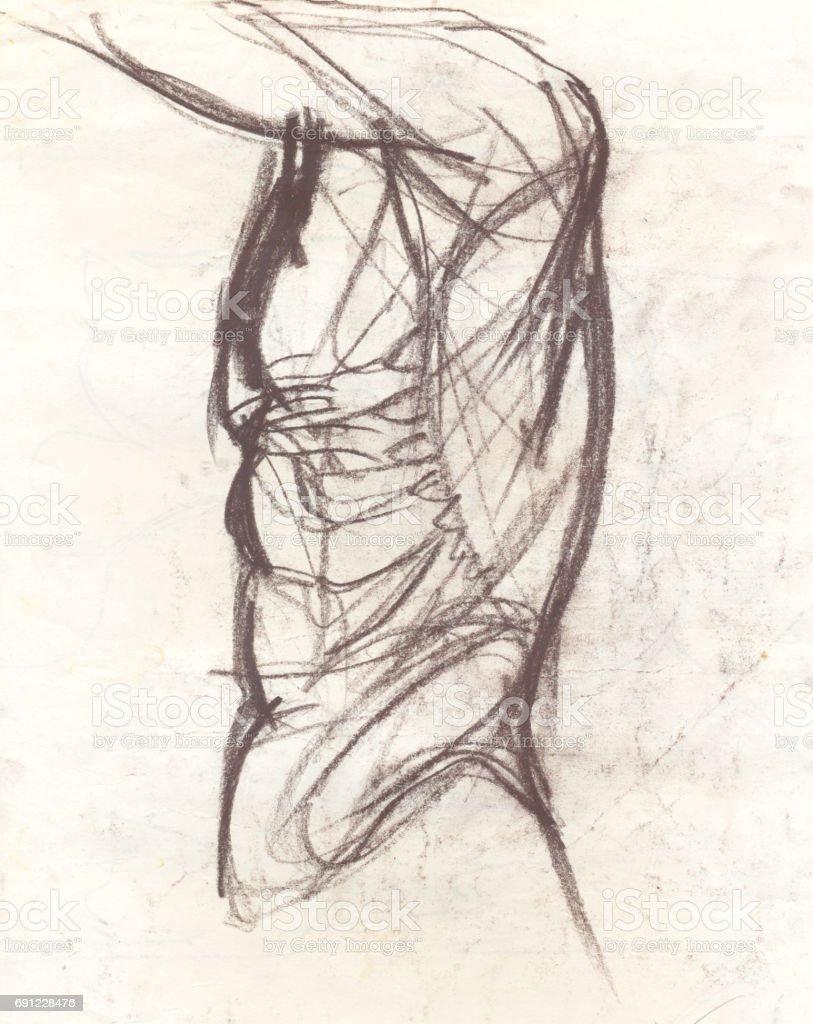 Ilustración de Dibujo De Torso Tono Sepia y más banco de imágenes de ...