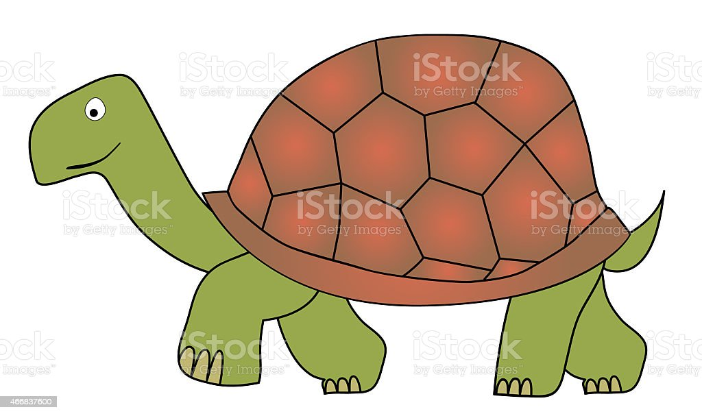 tortoise vector art illustration