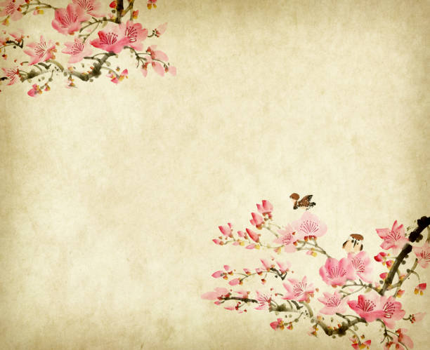 Traditional chinese painting Spring plum blossom and birds Traditional chinese painting Spring plum blossom and birds plum blossom stock illustrations