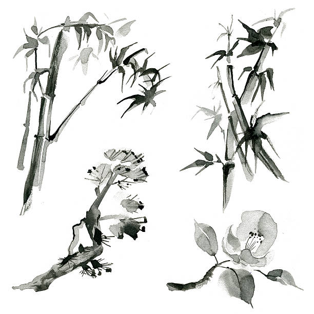 Traditional japanesel plants: bamboo, pine branch and rose, hand vector art illustration