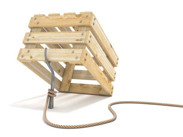 Trap made of wooden crate and rope tide to stick 3D vector art illustration