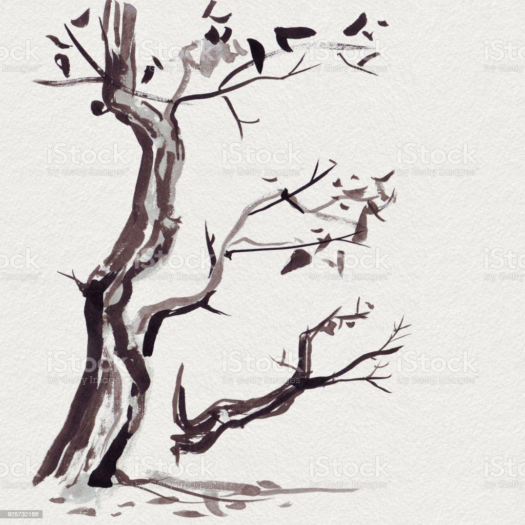 Agac Dali Boyama Sayfasi Coloring Free To Print