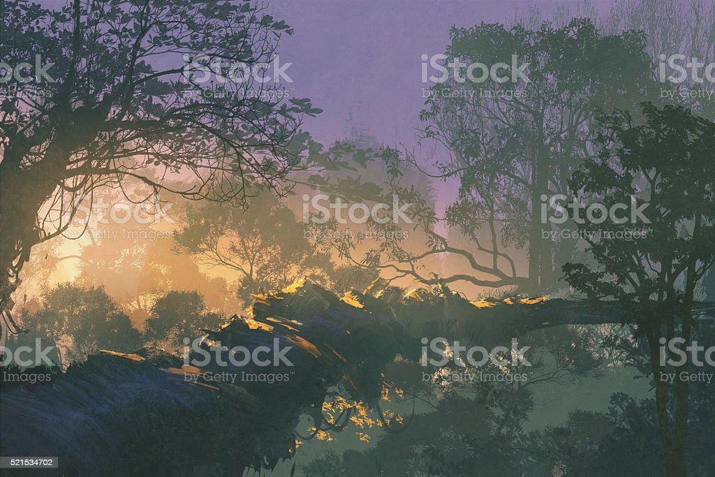 tree bridge in rain forest,sunrise in woods vector art illustration