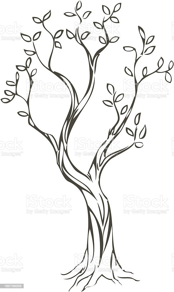 Tree royalty-free tree stock vector art & more images of beauty in nature