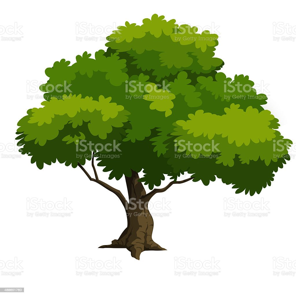 Vector Illustration Tree: Tree Stock Vector Art & More Images Of 2015 488651760