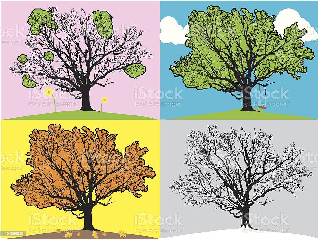 tree in seasons royalty-free stock vector art