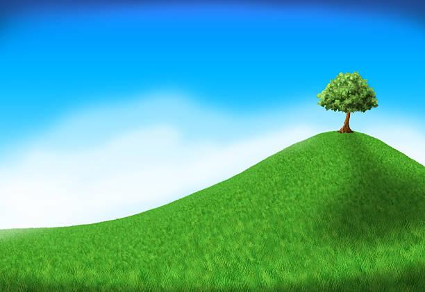tree on hill vector art illustration