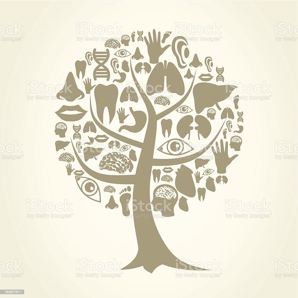 Ilustración de Árbol Parte Del Cuerpo y más banco de imágenes de ...