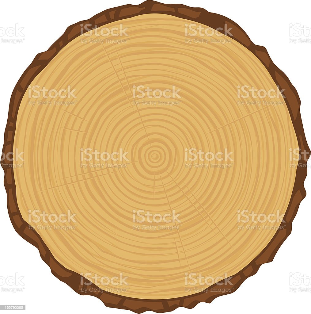 tree rings royalty-free tree rings stock vector art & more images of aging process