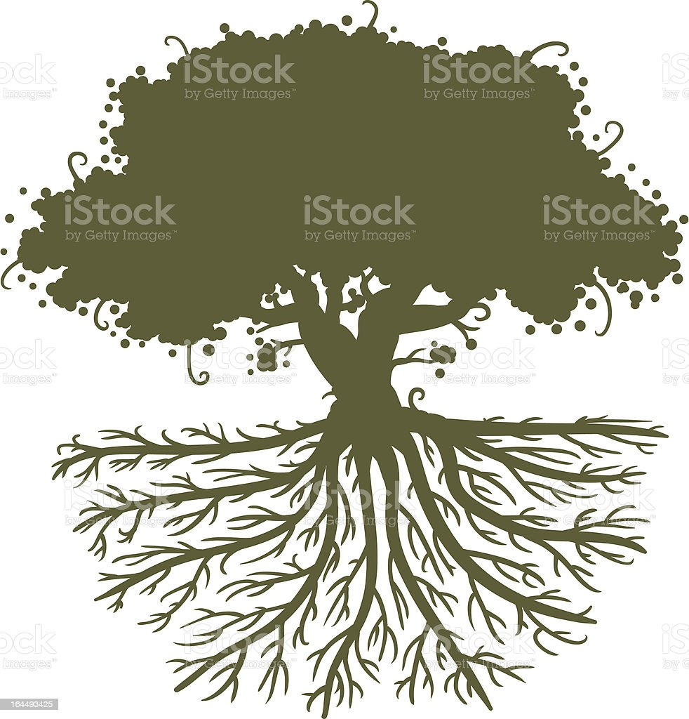 Image result for tree with deep roots