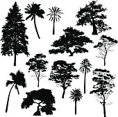 A variety of detailed tree silhouettes.