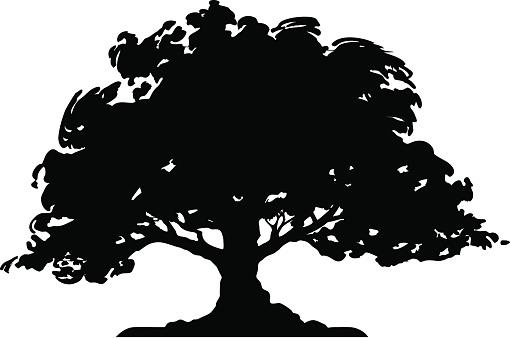 Tree - Silhouette (vector)