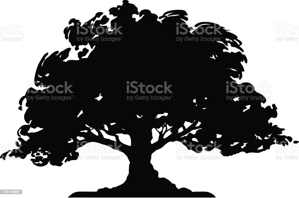 royalty free oak tree clip art vector images illustrations istock rh istockphoto com Willow Tree Silhouette Clip Art Pine Tree Silhouette Clip Art