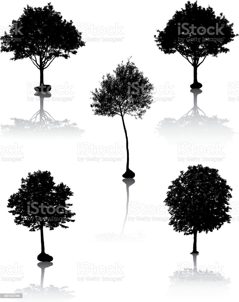 Tree silhouettes. [Vector]. royalty-free stock vector art
