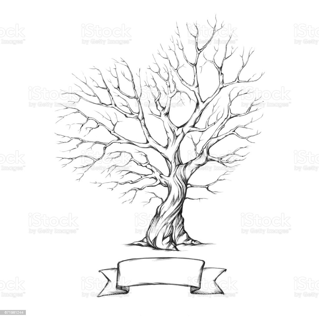 Tree with a heart-shaped crown vector art illustration