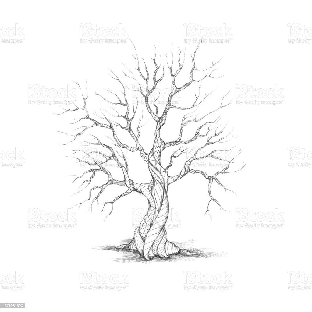 Baum mit gemusterte Rinde – Vektorgrafik