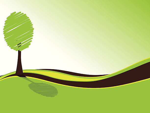 Tree with shadow in a meadow vector art illustration