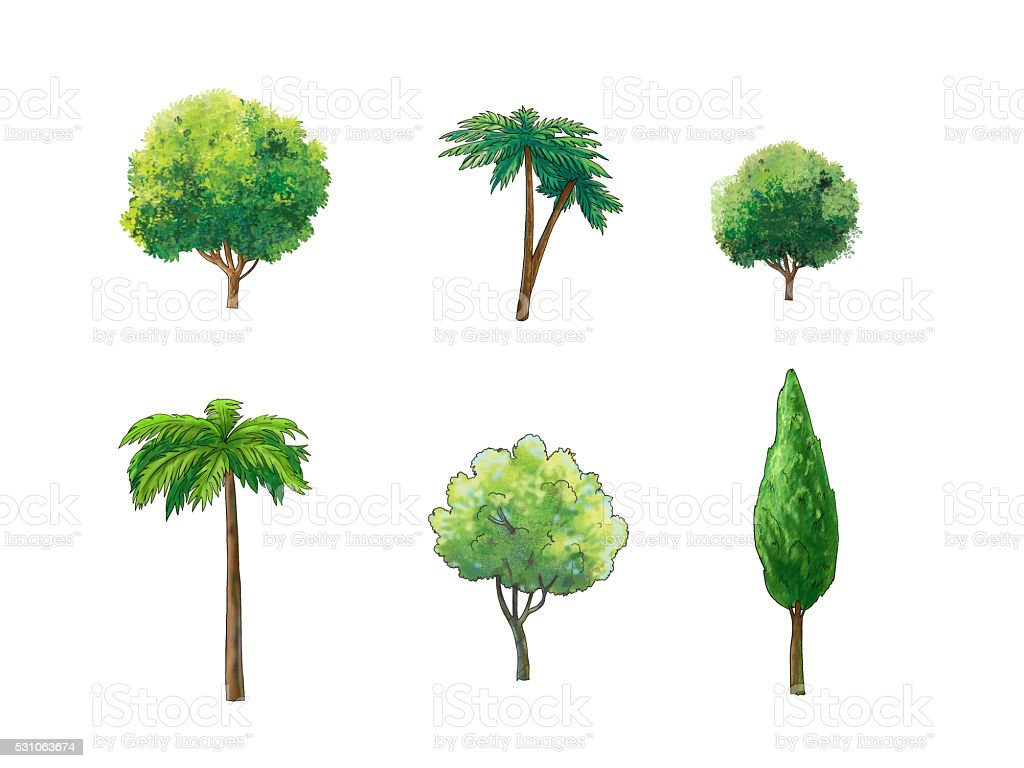 Trees Middle East vector art illustration