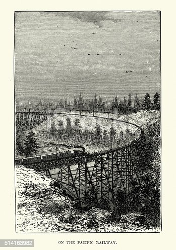 Vintage engraving showing a steam train crossing a trestle bridge on the Pacific Railway, 19th Century