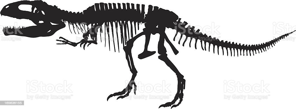 T-Rex Skeleton vector art illustration