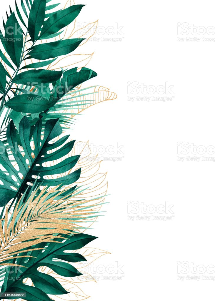 Tropical Background With Side Border Of Exotic Leaves Stock Illustration Download Image Now Istock 109,000+ vectors, stock photos & psd files. tropical background with side border of exotic leaves stock illustration download image now istock