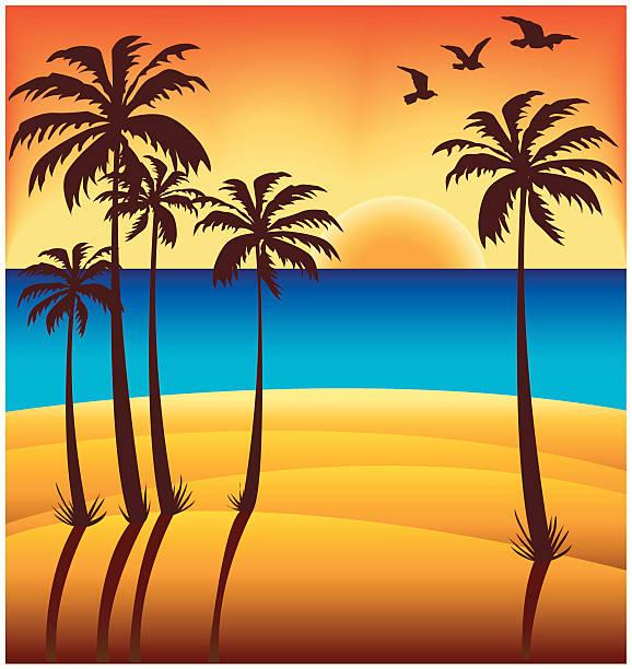 Tropical Beach Sunset vector art illustration