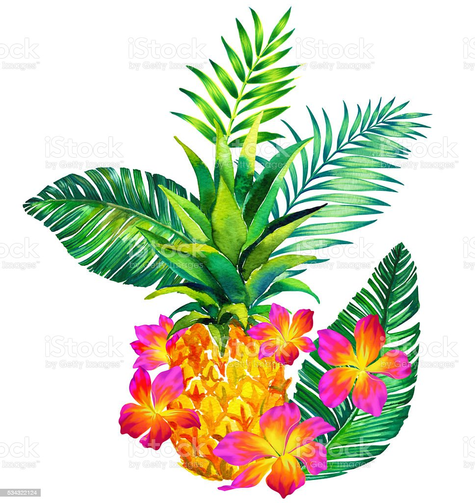 Tropical Bouquet Qith Pineapple Stock Vector Art More