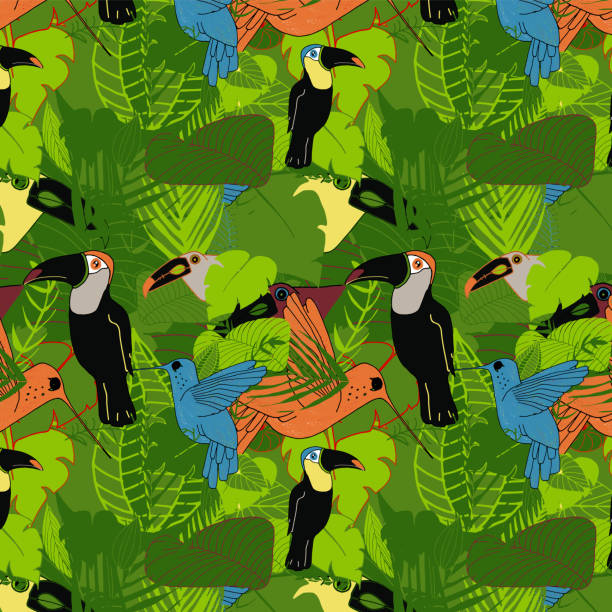 tropical dawn birds of paradise - ruth stock illustrations