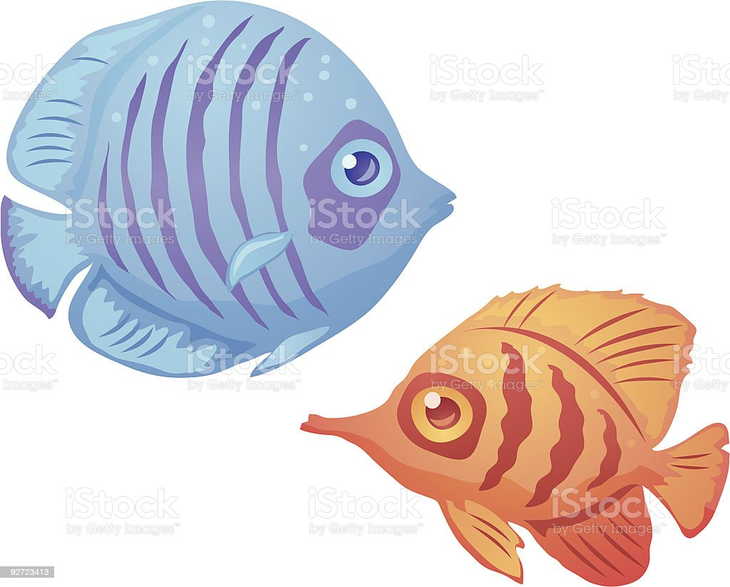 Tropical Fish vector art illustration