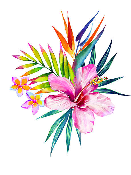 Royalty Free Tropical Flower Clip Art, Vector Images ...