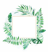 Tropical green floral frame with colorful tropical leaves