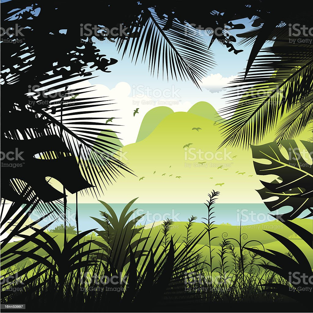 Tropical rainforest. vector art illustration