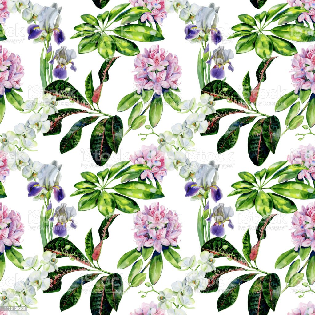 Tropical rhododendron flowers and iris seamless pattern watercolor. vector art illustration