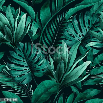 Tropical seamless pattern with exotic monstera, banana and palm leaves on dark background.