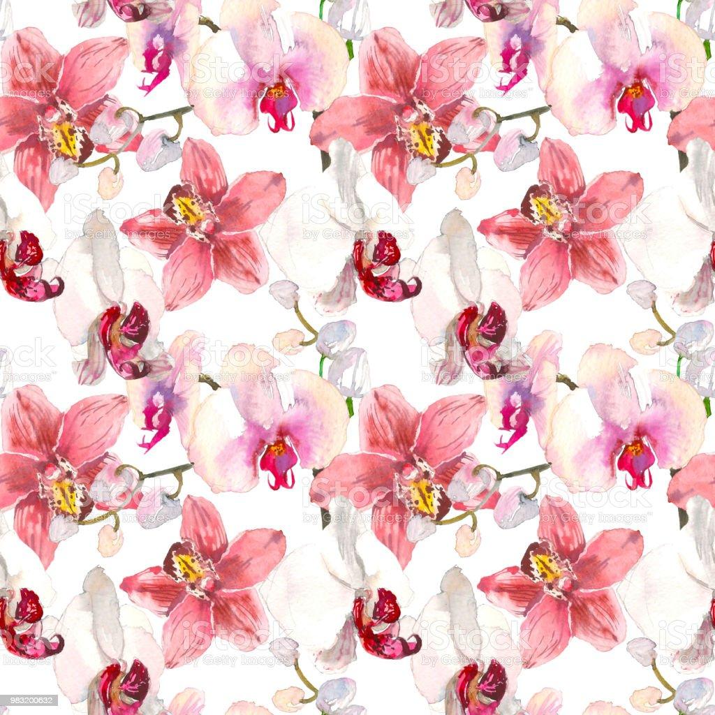 foto de Tropical Modèle Sans Couture Avec Des Fleurs Dorchidées Rose Fond ...