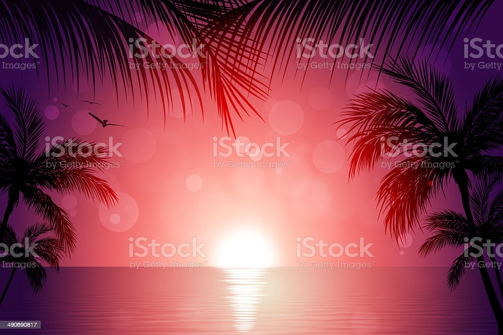 Tropical Sunset vector art illustration