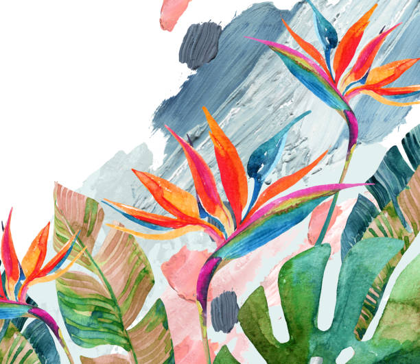 Tropical watercolor bird-of-paradise flower and tropical leaves on rough brush strokes background Tropical watercolor bird-of-paradise flower and tropical leaves on rough brush strokes background. Colorful watercolor florals on acrylic blots texture. Hand painted water color illustration acrylic painting stock illustrations