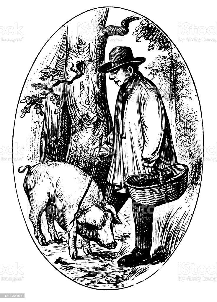 Truffle collector | Antique Design Illustrations vector art illustration