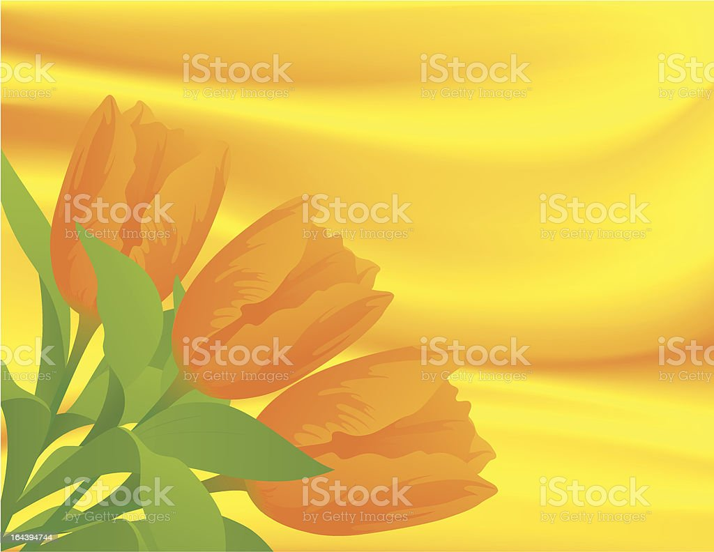 Tulips on silk background royalty-free stock vector art
