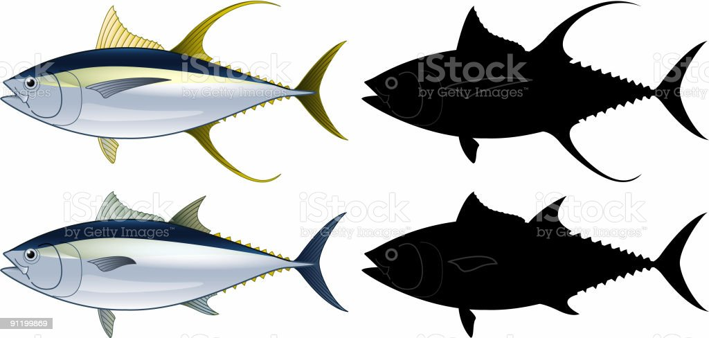 Tuna fish royalty-free tuna fish stock vector art & more images of animal fin