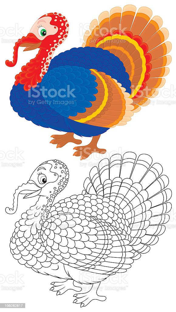 Turkey royalty-free turkey stock vector art & more images of animal