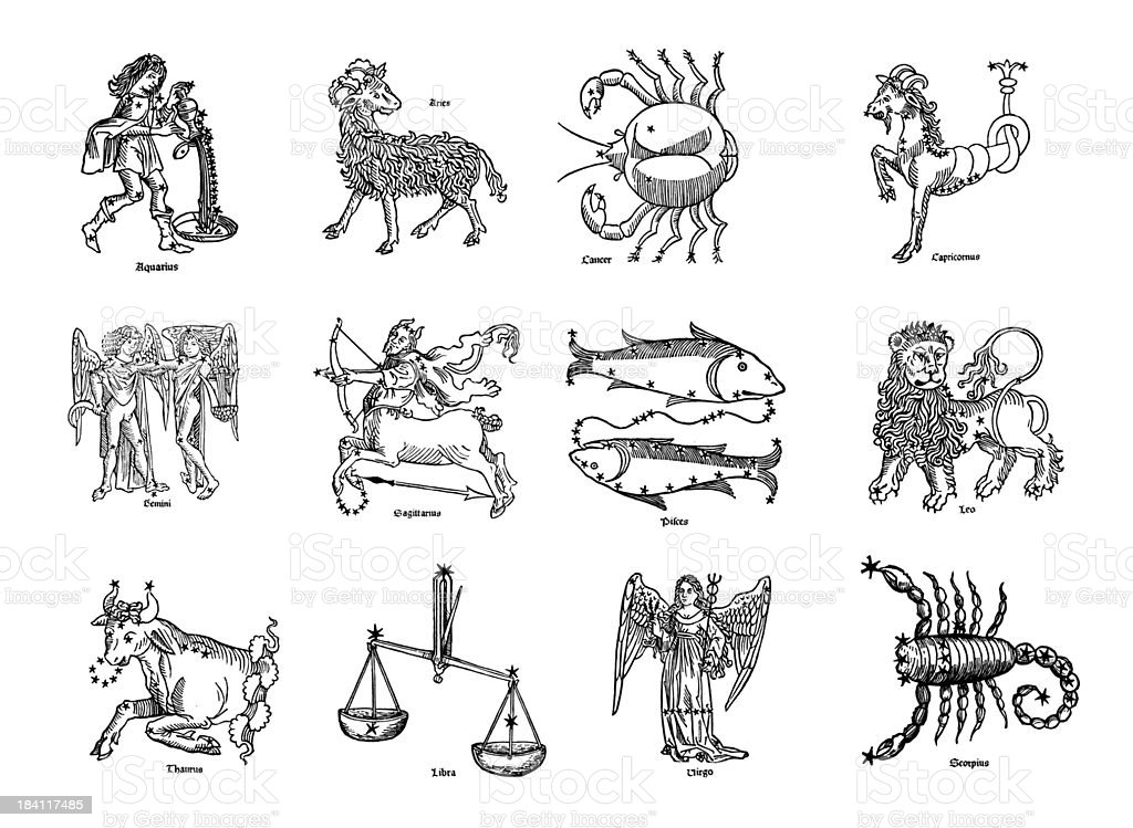 Twelve Zodiac Signs vector art illustration