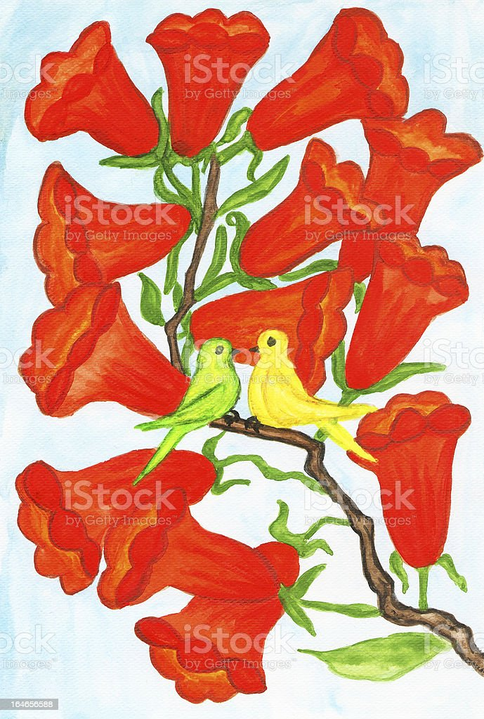 Two birds on branch with flowers Campsis royalty-free stock vector art