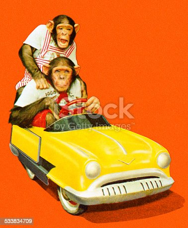 http://csaimages.com/images/istockprofile/csa_vector_dsp.jpg