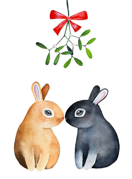 Download 172 Bunnies Kissing Illustrations Clip Art Istock